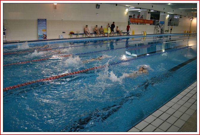 青岛市新兴体育馆第二届会员游泳挑战赛圆满落幕